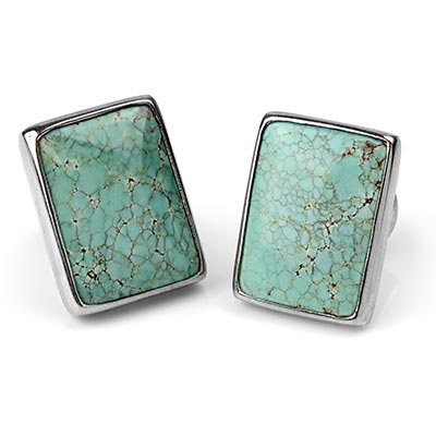 Silver Plugs with Free Form Turquoise