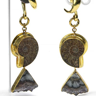 Solid Brass Ammonite and Stalactite Weights
